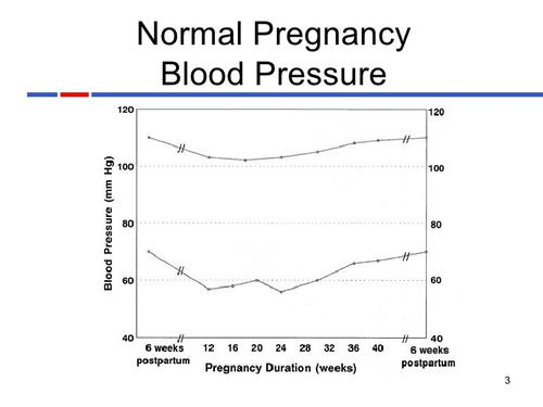 What Is Normal Blood Pressure In Pregnancy
